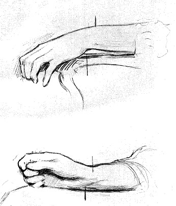 THE RELATIVE POSITION OF CONCAVITIES AND CONVEXITIES OF THE WRIST,<br />